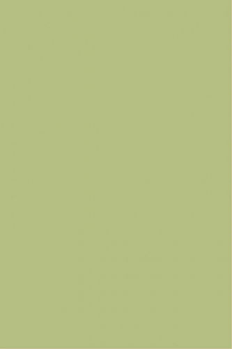 Palitra C-PWK081светло-зеленый 20х30