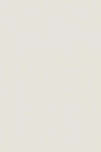 Palitra С-PWK521 светло-серый 20х30